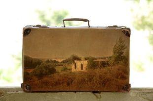 suitcase_8